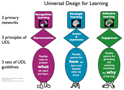 UDL networks, principles and guidelines